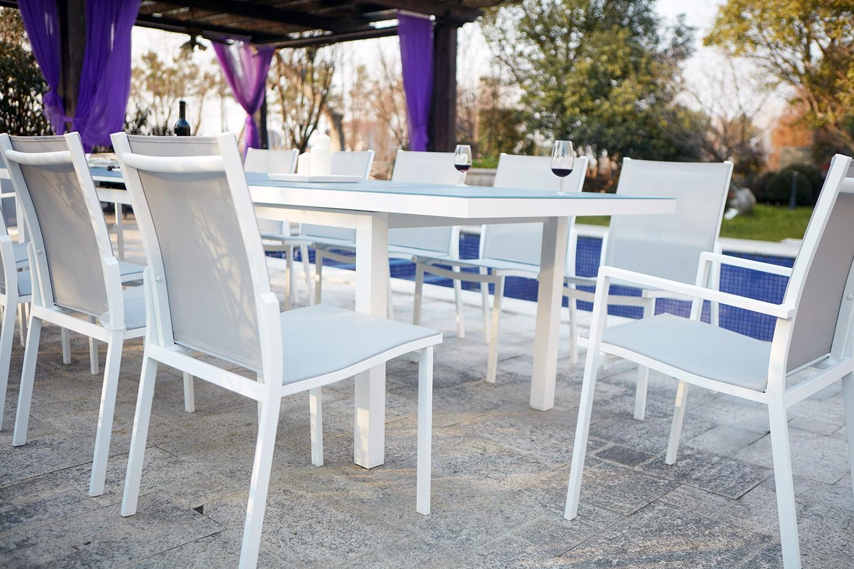 Niari 12 : table de jardin extensible 12 personnes avec 2 fauteuils et 10  chaises en aluminium